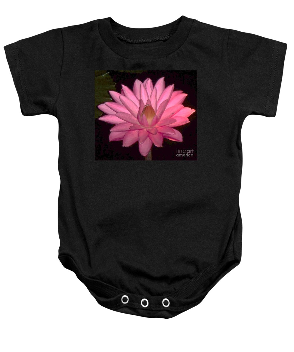 Floral Baby Onesie featuring the photograph Pink Lily Flower by Eric Schiabor