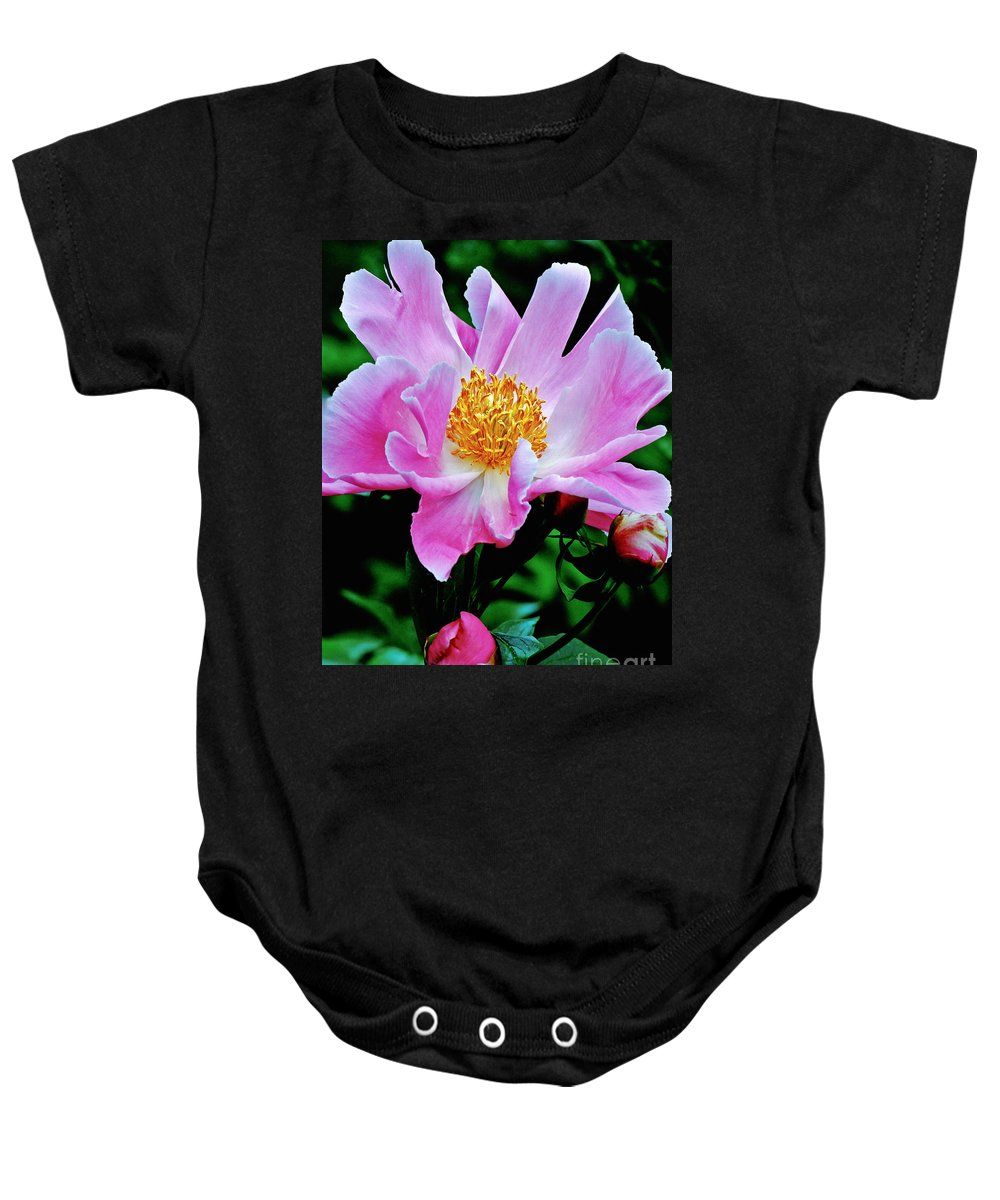 Flower Photograph Baby Onesie featuring the photograph Pink Peony Garden by Carol F Austin