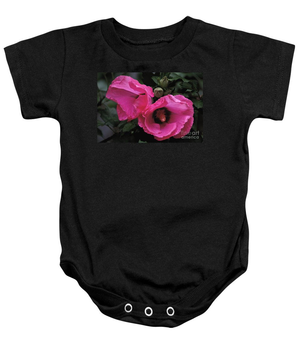 Rose Of Sharon Baby Onesie featuring the photograph Pink Twins by William Norton