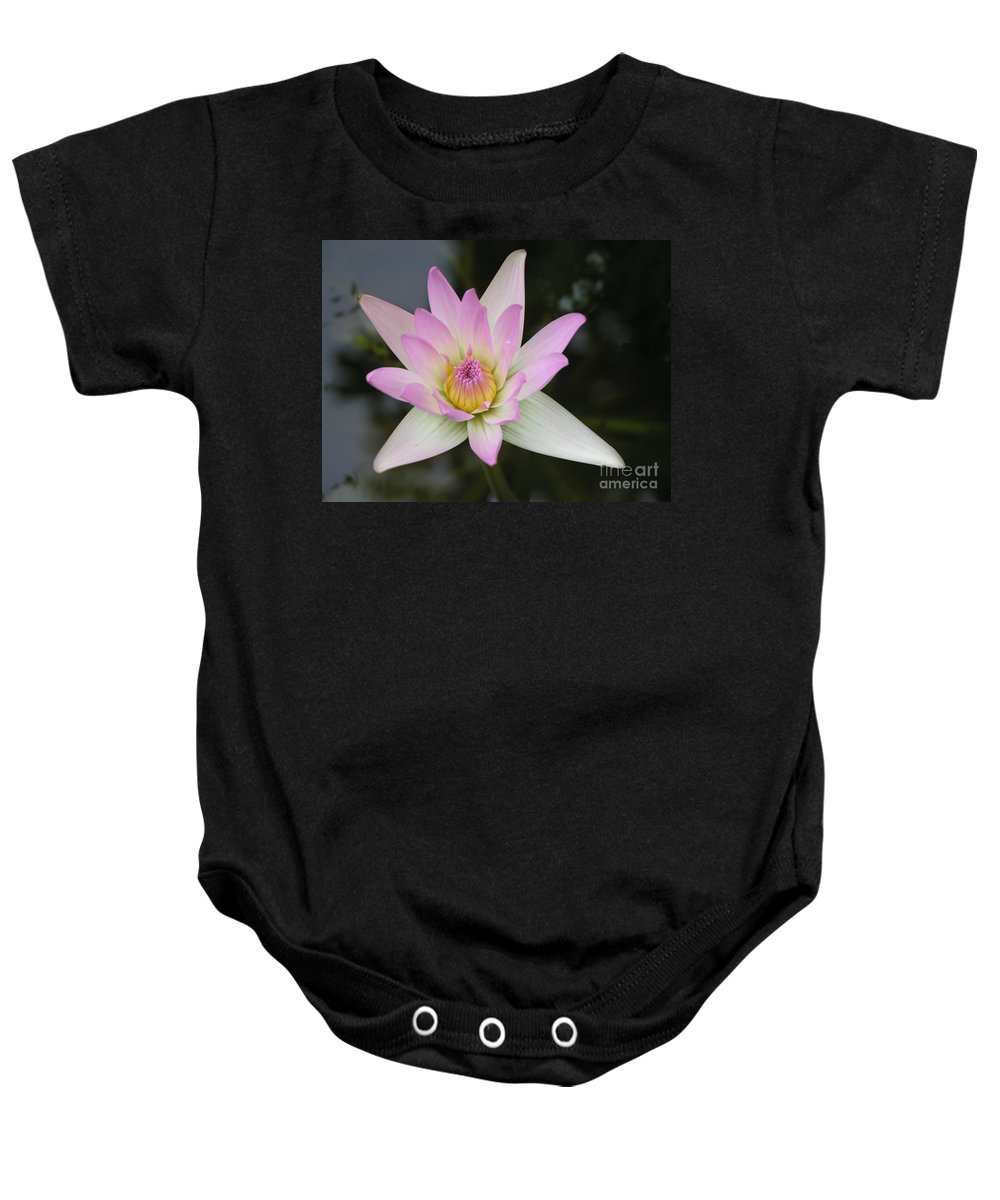 Pointed Pink Lily Baby Onesie featuring the photograph Pointed Pink Lily by Mary Deal