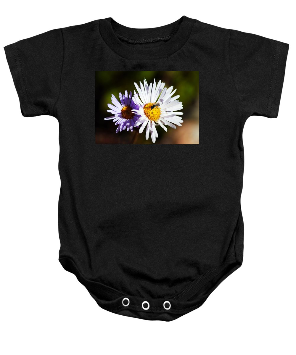 Wildflower Baby Onesie featuring the photograph Pollination by Brian Kerls
