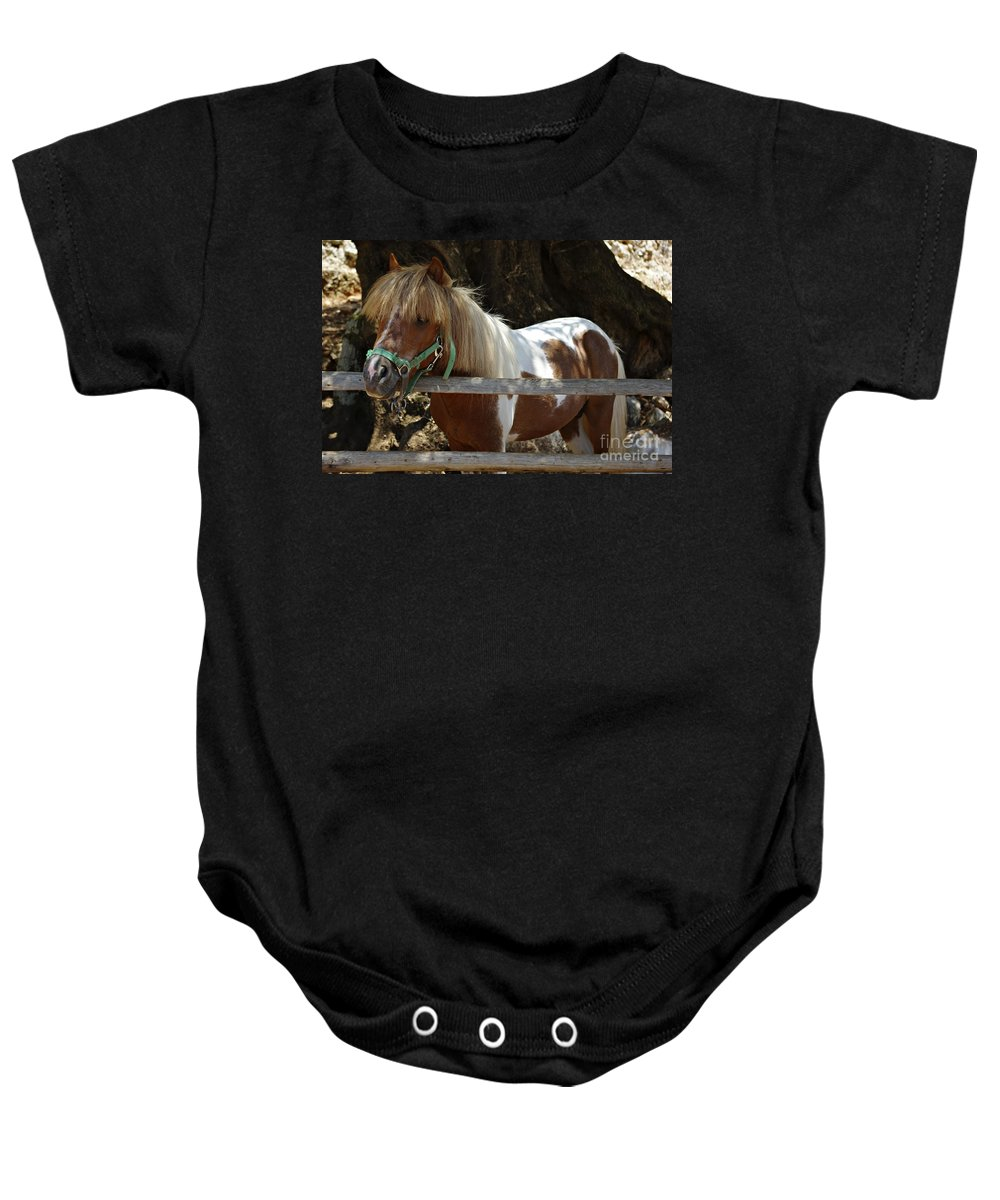 Alone Baby Onesie featuring the photograph Pony Horse by Zoran Berdjan