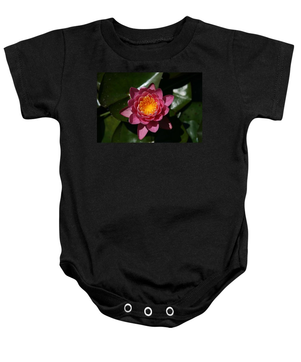 Lily Flowers Baby Onesie featuring the photograph Pools Of Pollen by Neal Eslinger