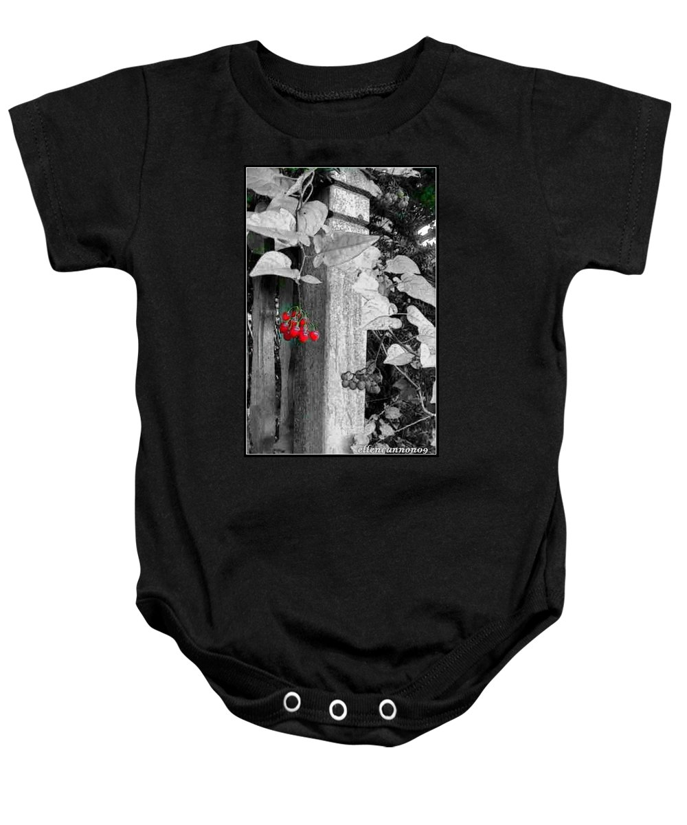 Porch Post Baby Onesie featuring the photograph Porch Post Berries Color Punch by Ellen Cannon