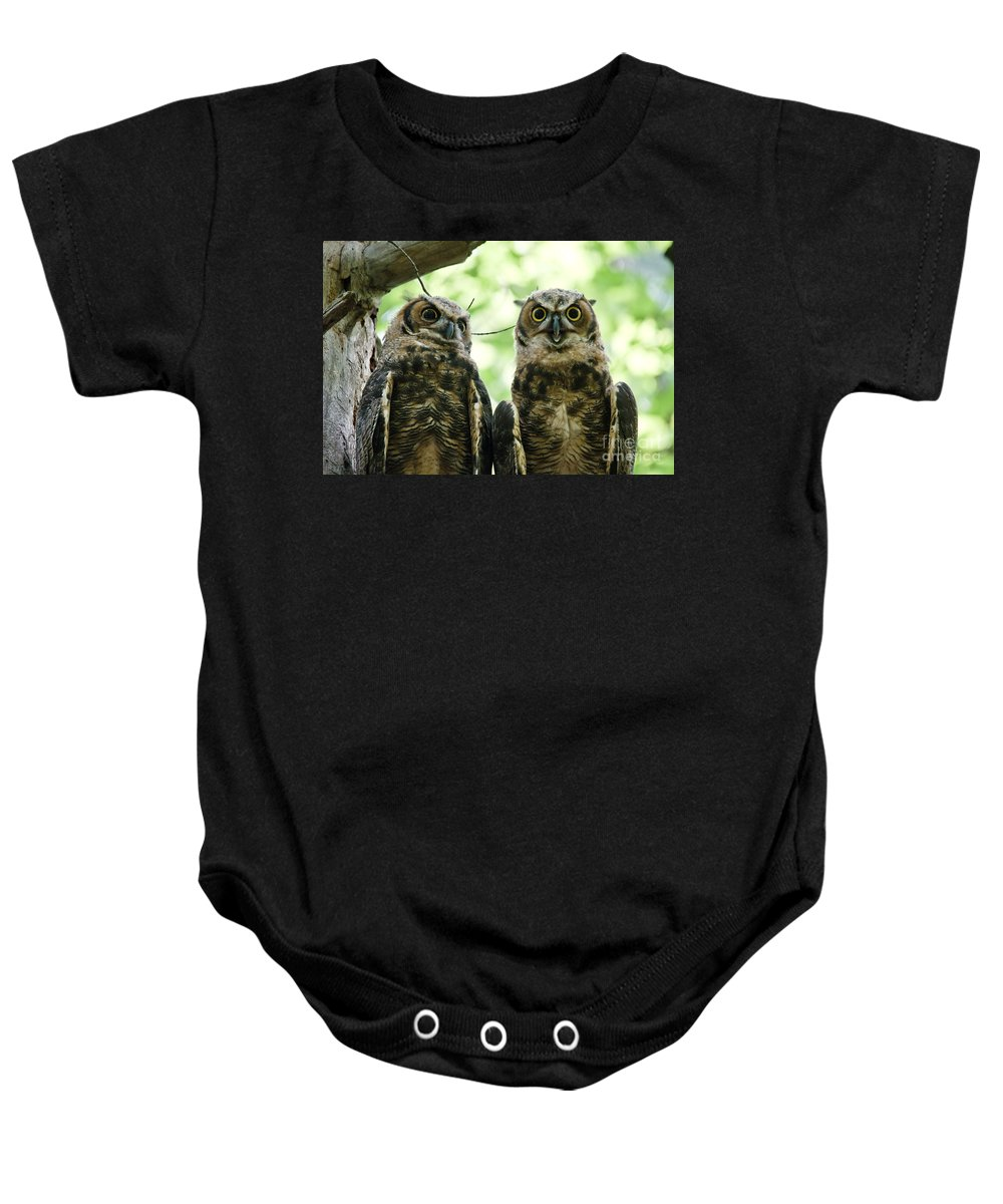 Owlets Baby Onesie featuring the photograph Portrait Of A Pair Of Owls by Cheryl Baxter