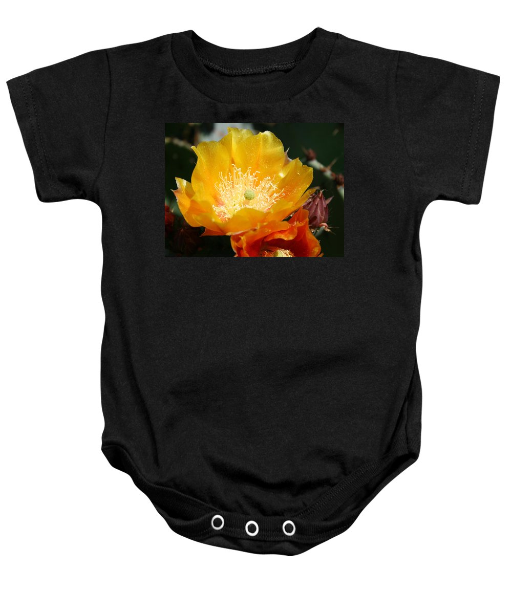 Prickly Pear Blossom Baby Onesie featuring the photograph Prickly Pear Blossom by Ellen Henneke