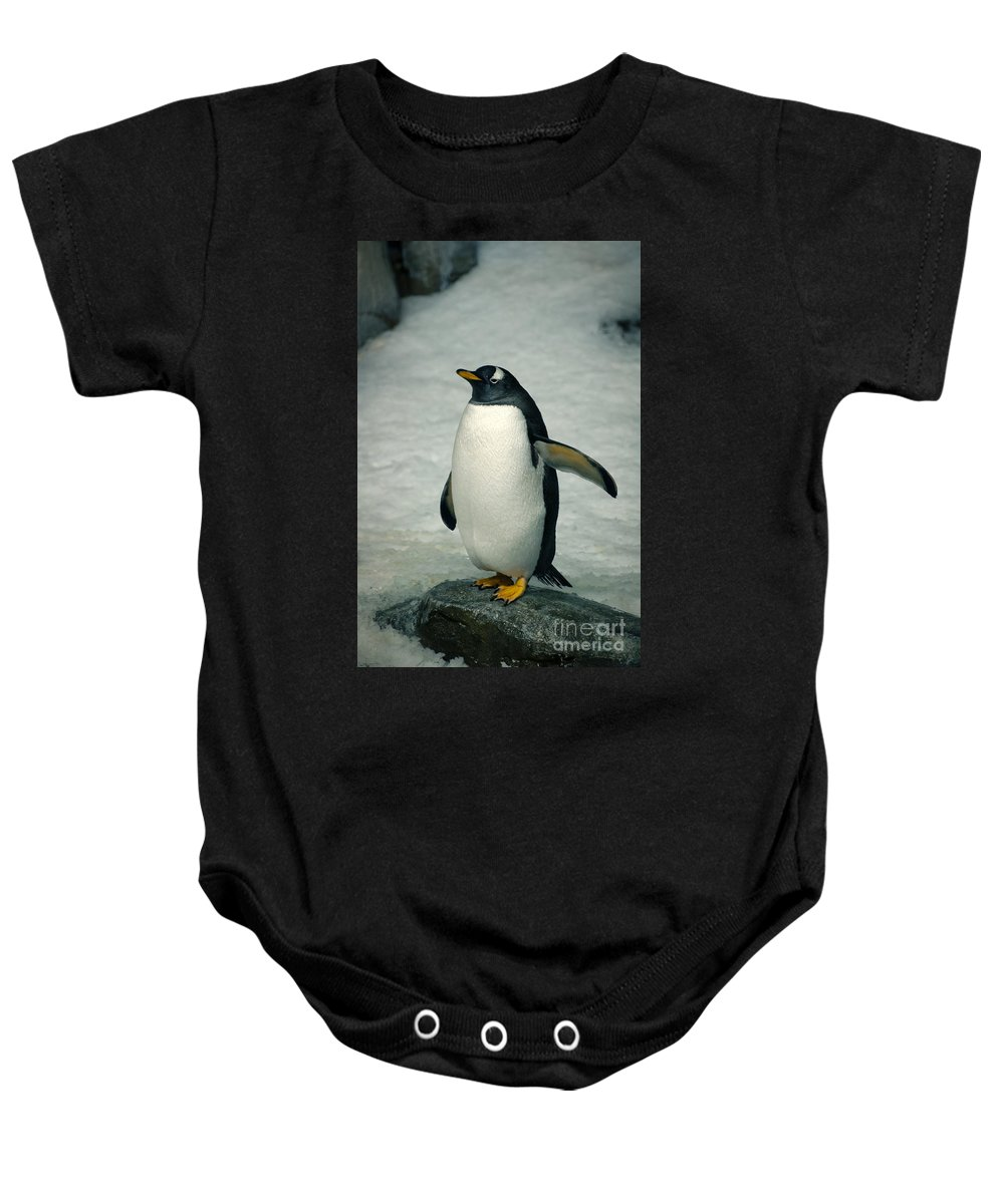 Gentoo Baby Onesie featuring the photograph Psst ... He Went That Way by Bianca Nadeau