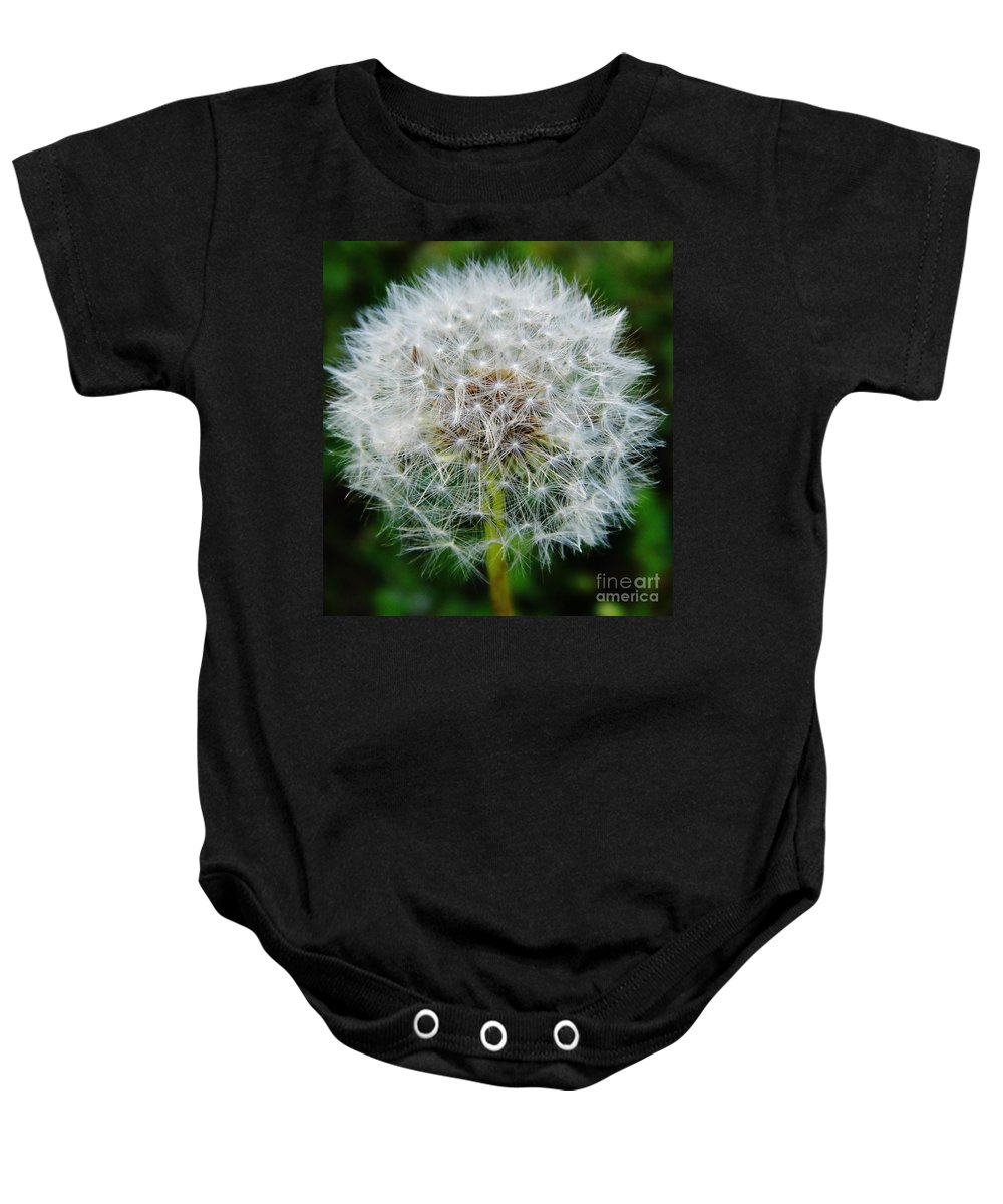 Dandelion Baby Onesie featuring the photograph Puff The Dandelion by D Hackett