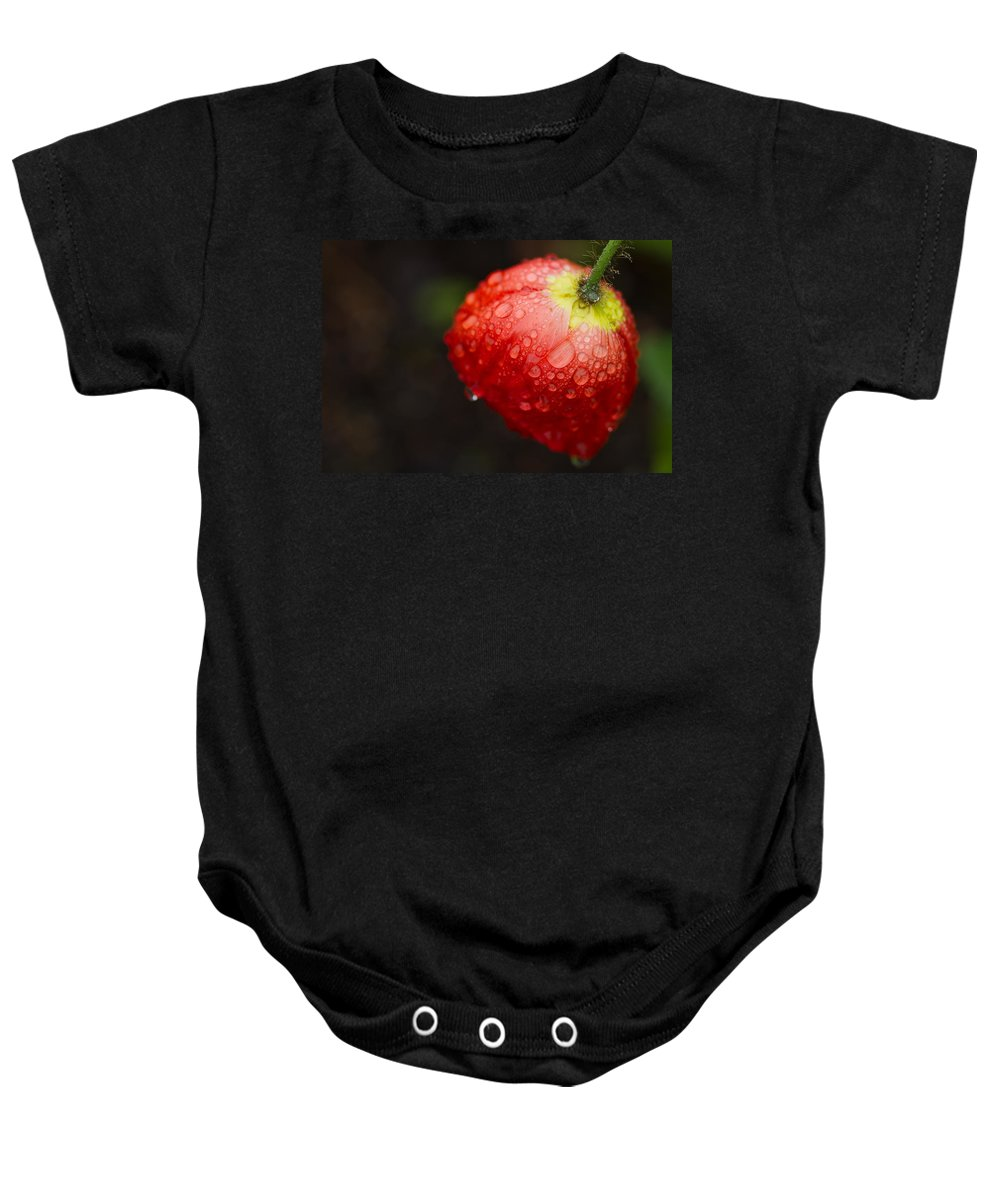 Poppy Baby Onesie featuring the photograph Raindrops And Poppy by Lindley Johnson