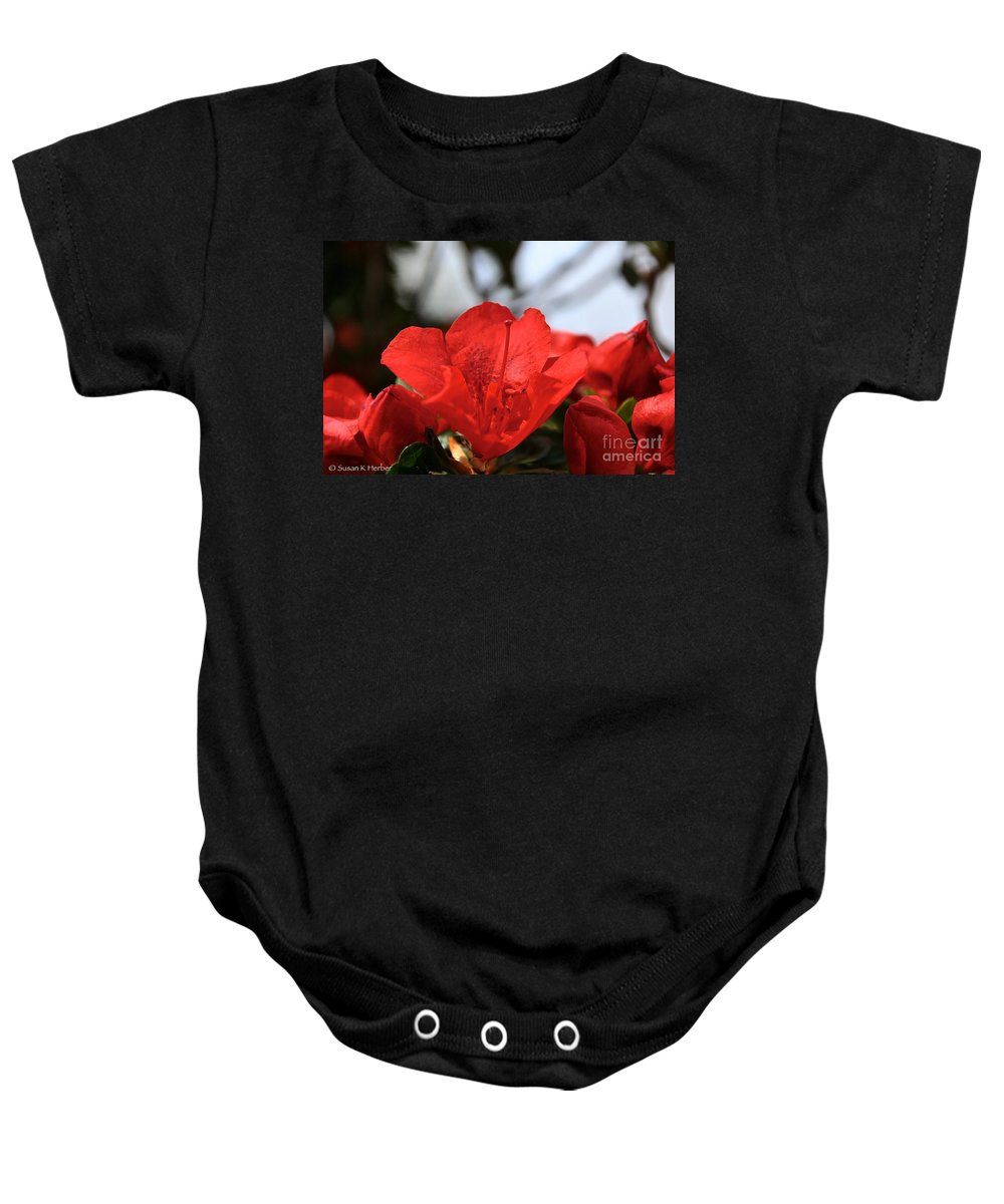 Flower Baby Onesie featuring the photograph Red April by Susan Herber