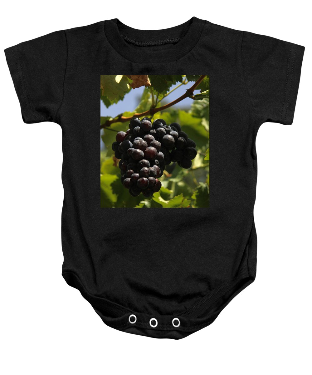 Grapes Baby Onesie featuring the photograph Red Grapes by Christiane Schulze Art And Photography