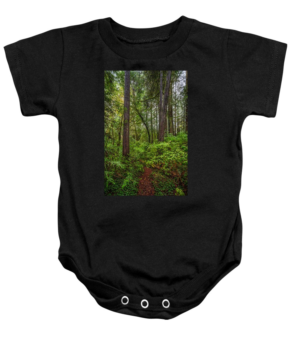 Copyrighted Baby Onesie featuring the photograph Redwoods 2 by Mike Penney