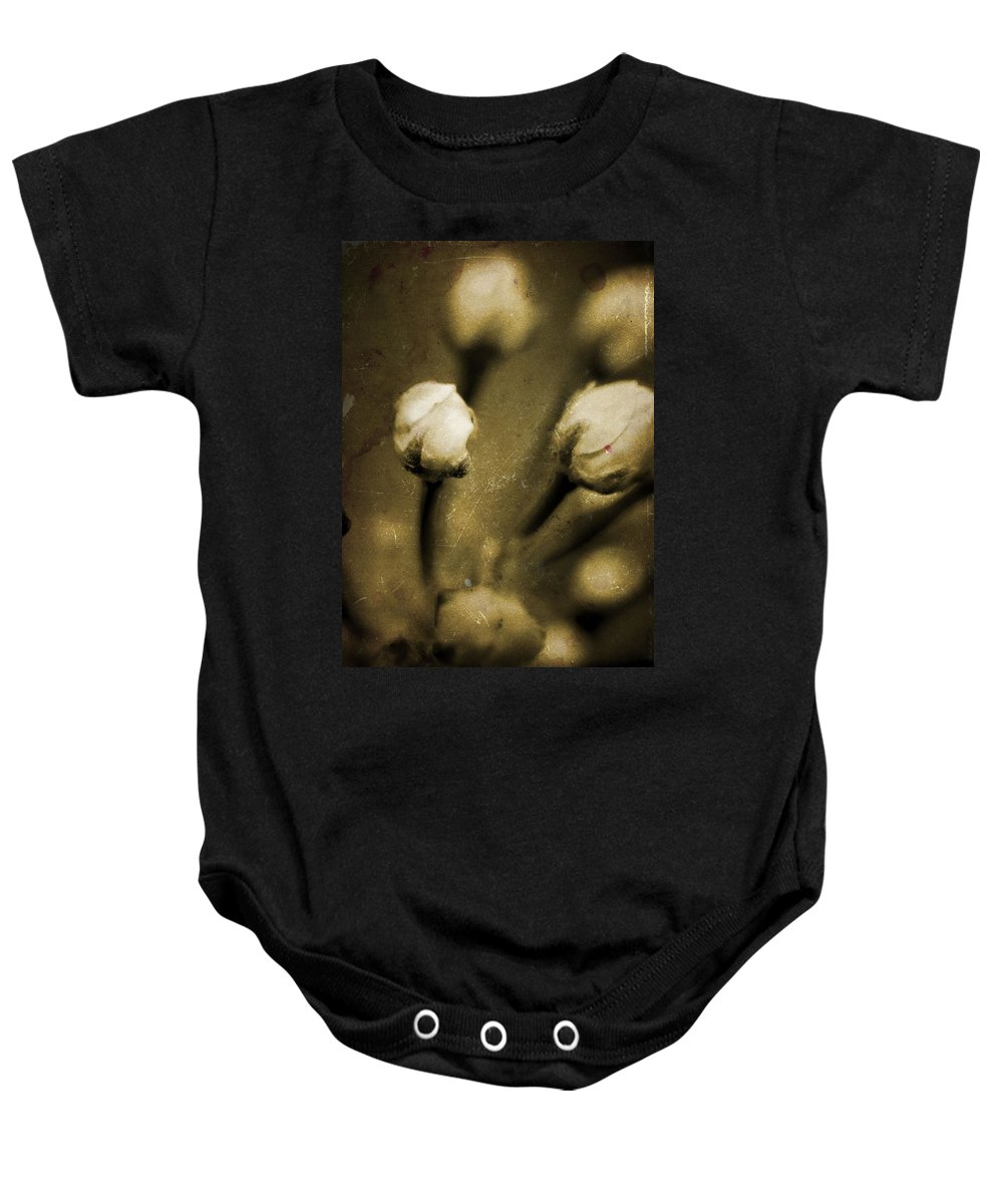 Flowers Baby Onesie featuring the photograph Renewal Of Life by Timothy Bischoff