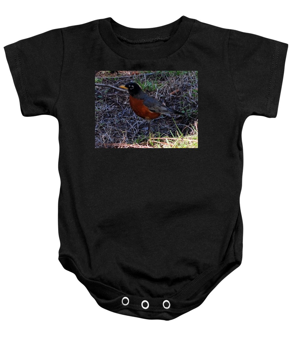 Migrated In The Spring Baby Onesie featuring the photograph Robin Redbreast by Robert Floyd