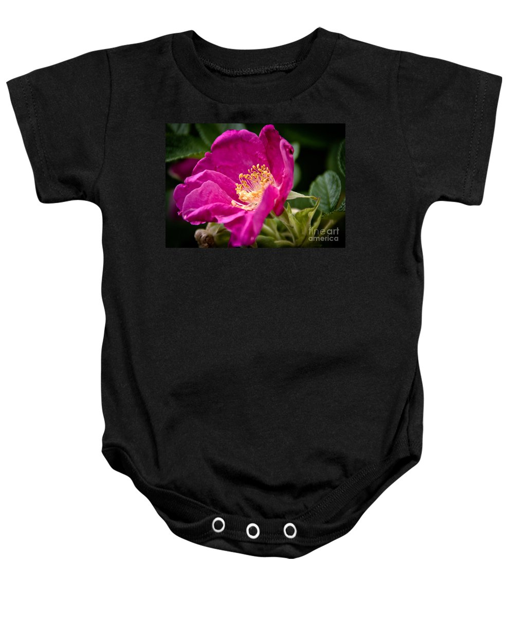 Rose Baby Onesie featuring the photograph Rose by Cheryl Baxter