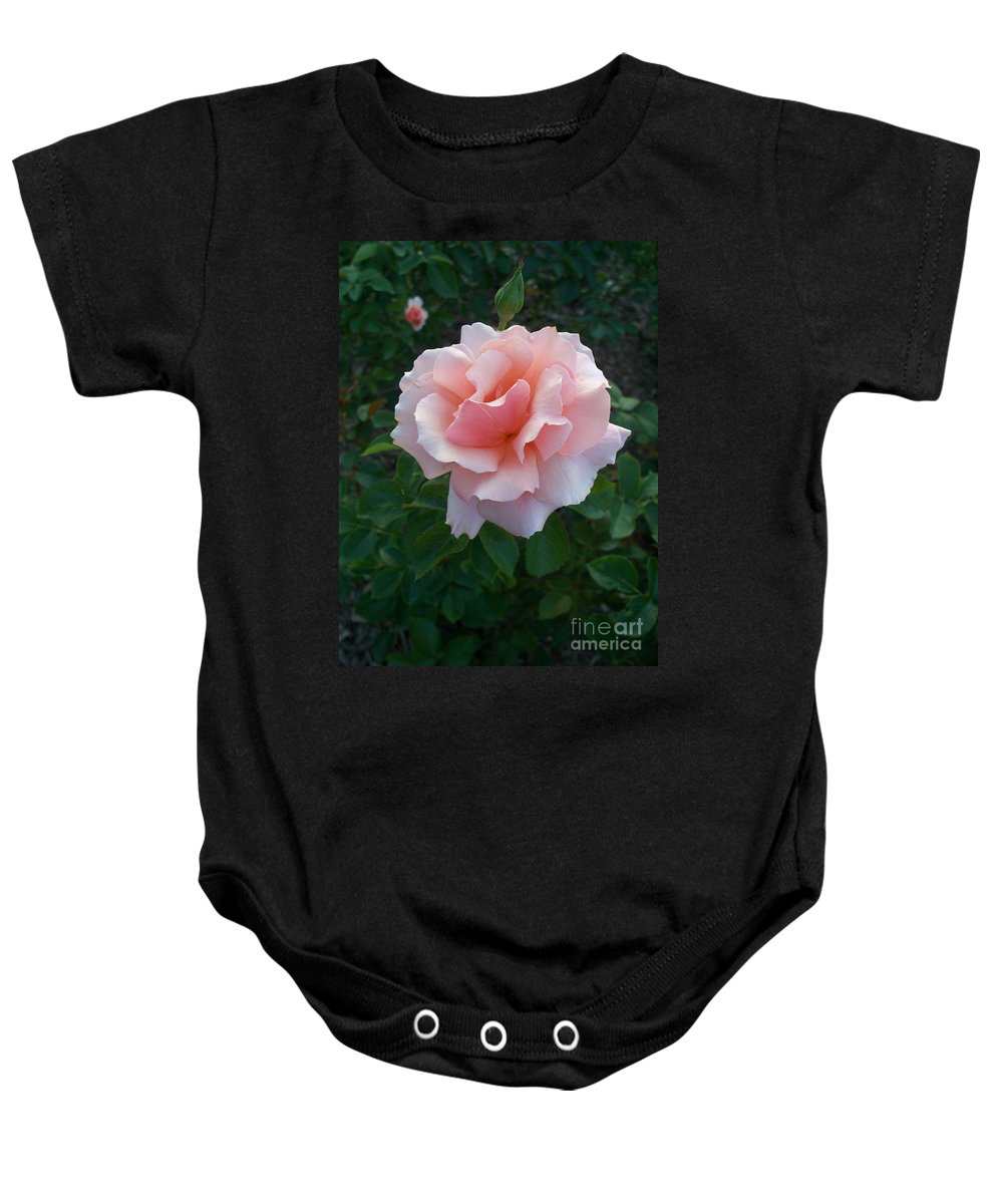 Pink Baby Onesie featuring the photograph Rose by Eric Schiabor