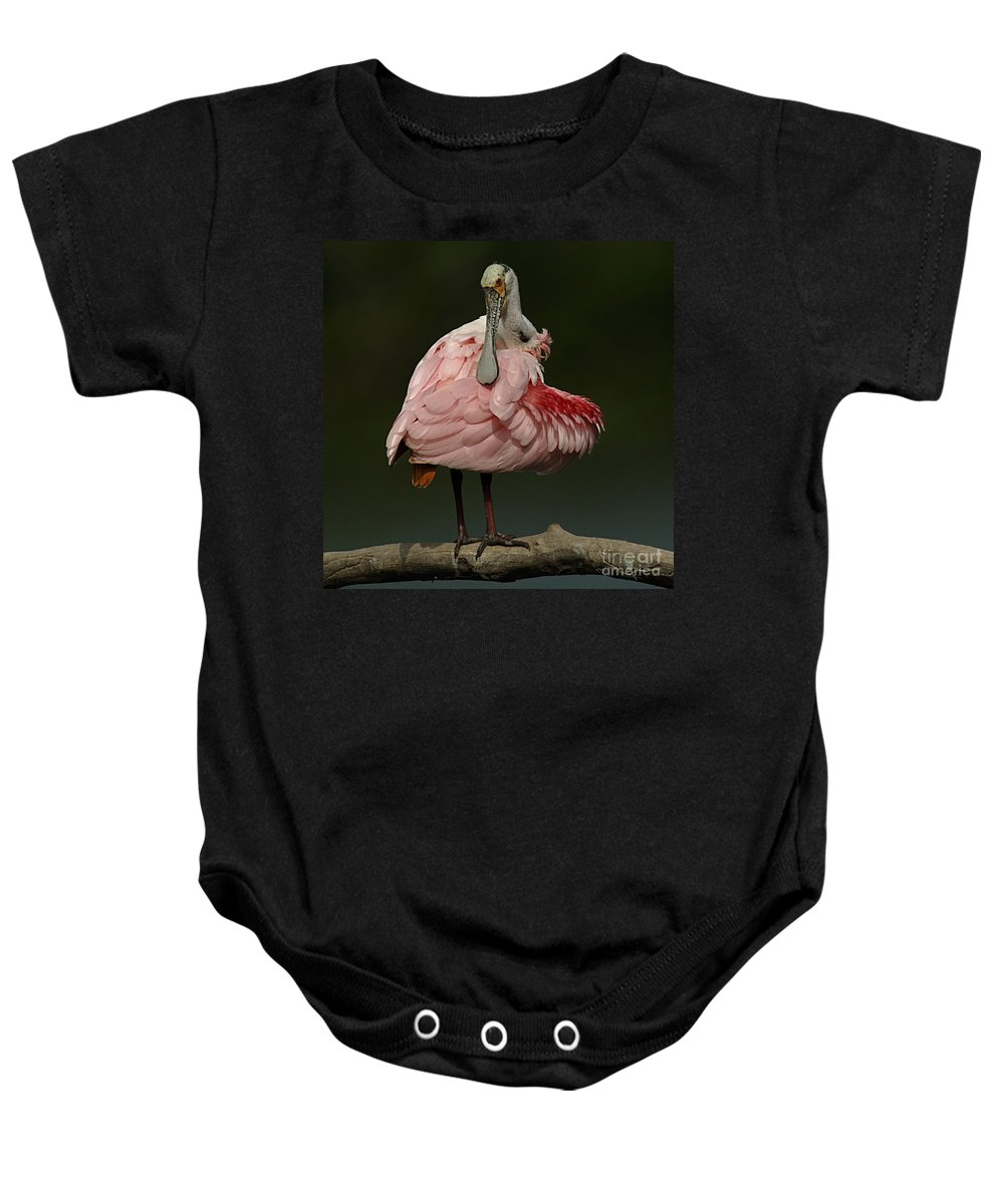 Bird Baby Onesie featuring the photograph Rosiette Spoonbill by Bob Christopher