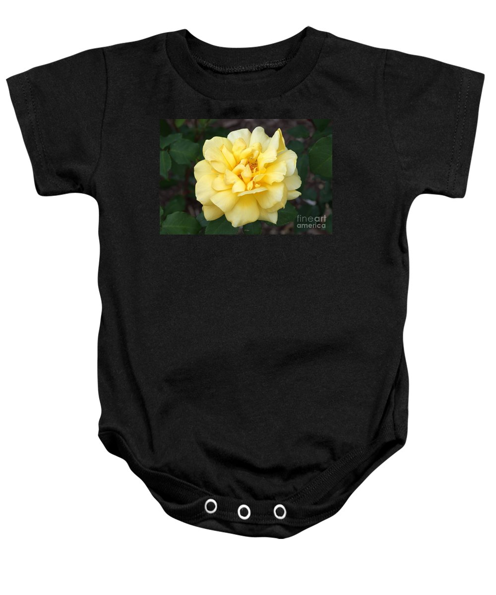 Yellow Baby Onesie featuring the photograph Royal Yellow Delight Rose... by Rob Luzier