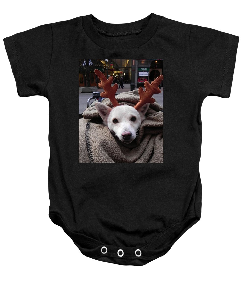 Dog Baby Onesie featuring the photograph Rudolph by Cheryl Hoyle