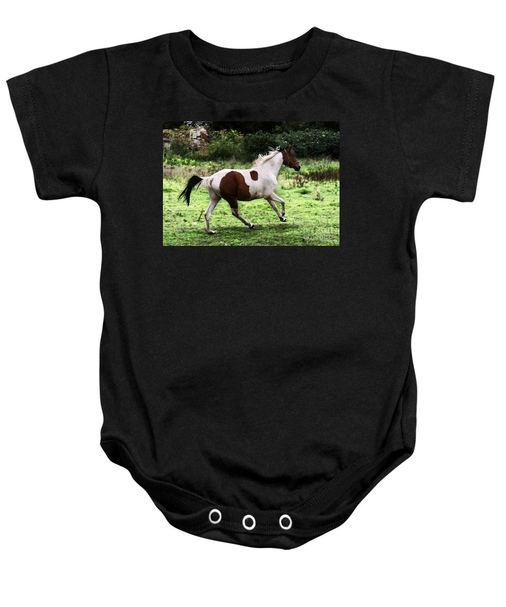 Pinto Baby Onesie featuring the photograph Running Pinto Horse by Angel Ciesniarska