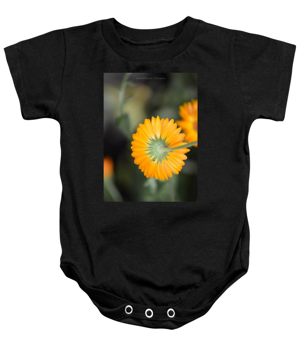 Calendula Baby Onesie featuring the photograph Saffron Wand by Sonali Gangane