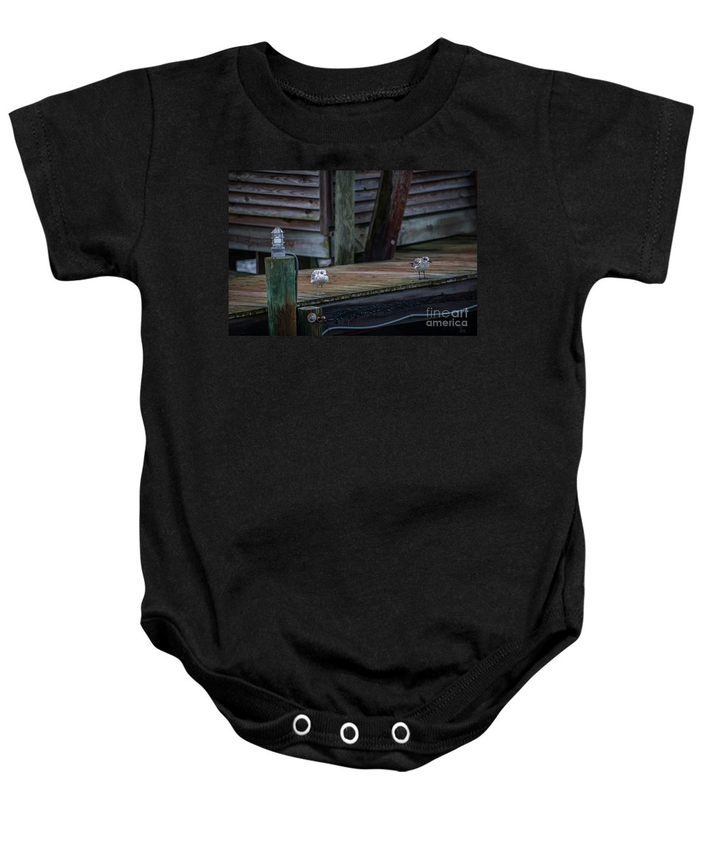 Sea Birds Baby Onesie featuring the photograph Sea Birds Dockside by Dale Powell