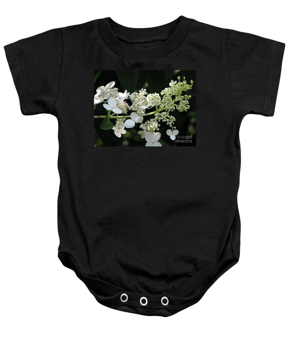Hydrangea Baby Onesie featuring the photograph Simply by Amanda Barcon