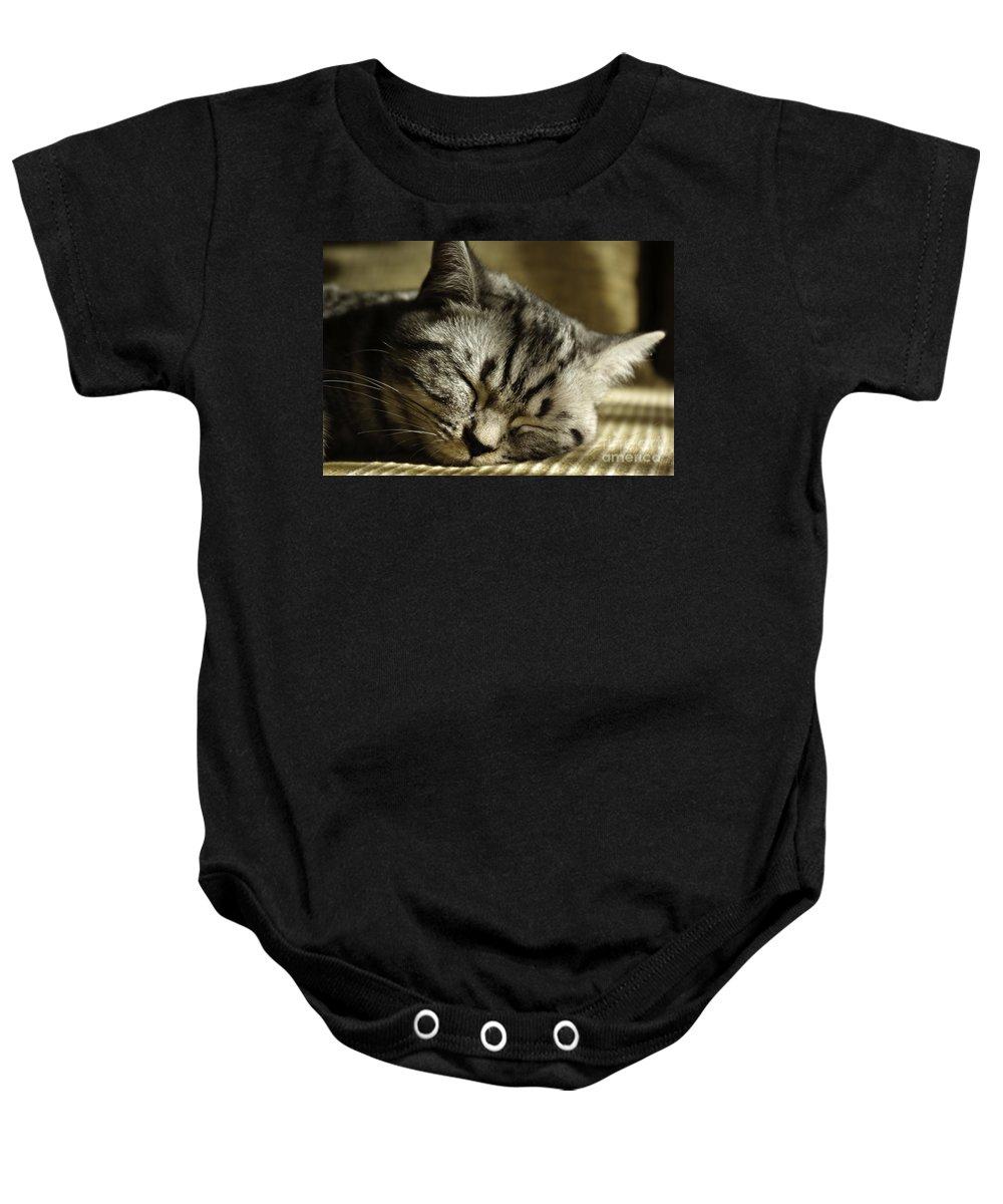 Adult Baby Onesie featuring the photograph Sleeping Pet by Zoran Berdjan