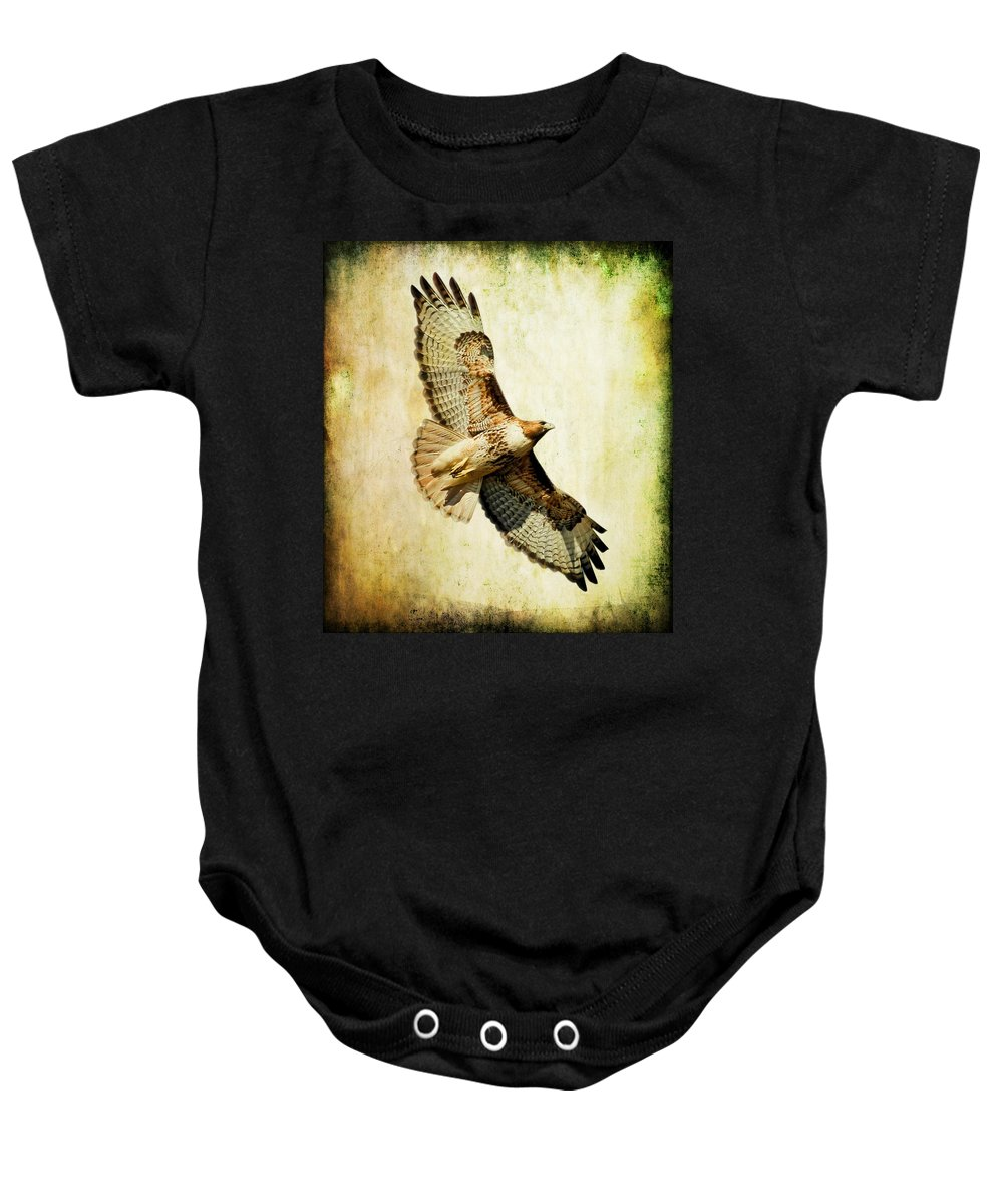 Hawk Baby Onesie featuring the photograph Soaring Hawk by Athena Mckinzie