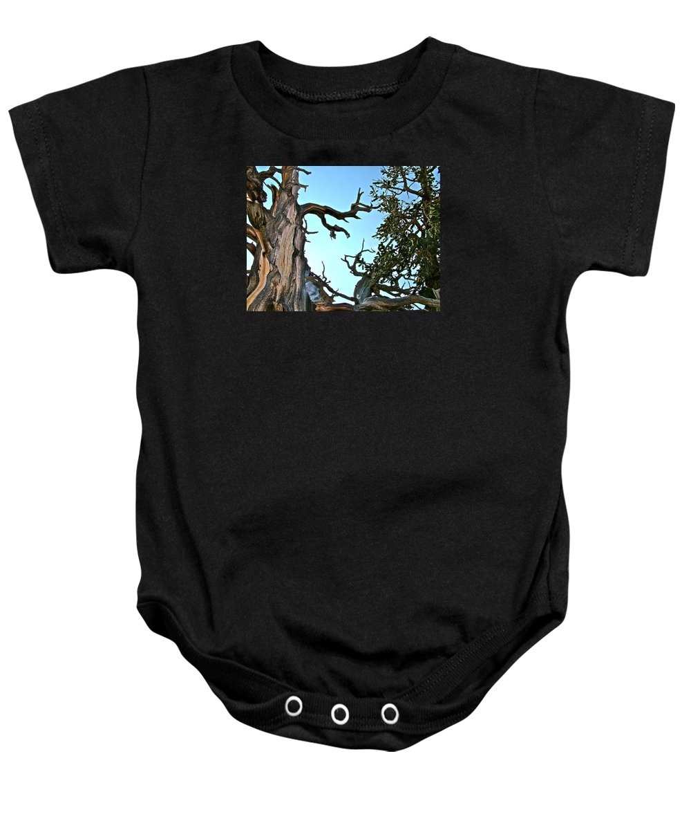 Spooky Bristlecone Pine At Spectra Point On Ramparts Trail In Cedar Breaks National Monument Baby Onesie featuring the photograph Spooky Bristlecone Pine At Spectra Point On Ramparts Trail In Cedar Breaks National Monument-utah by Ruth Hager