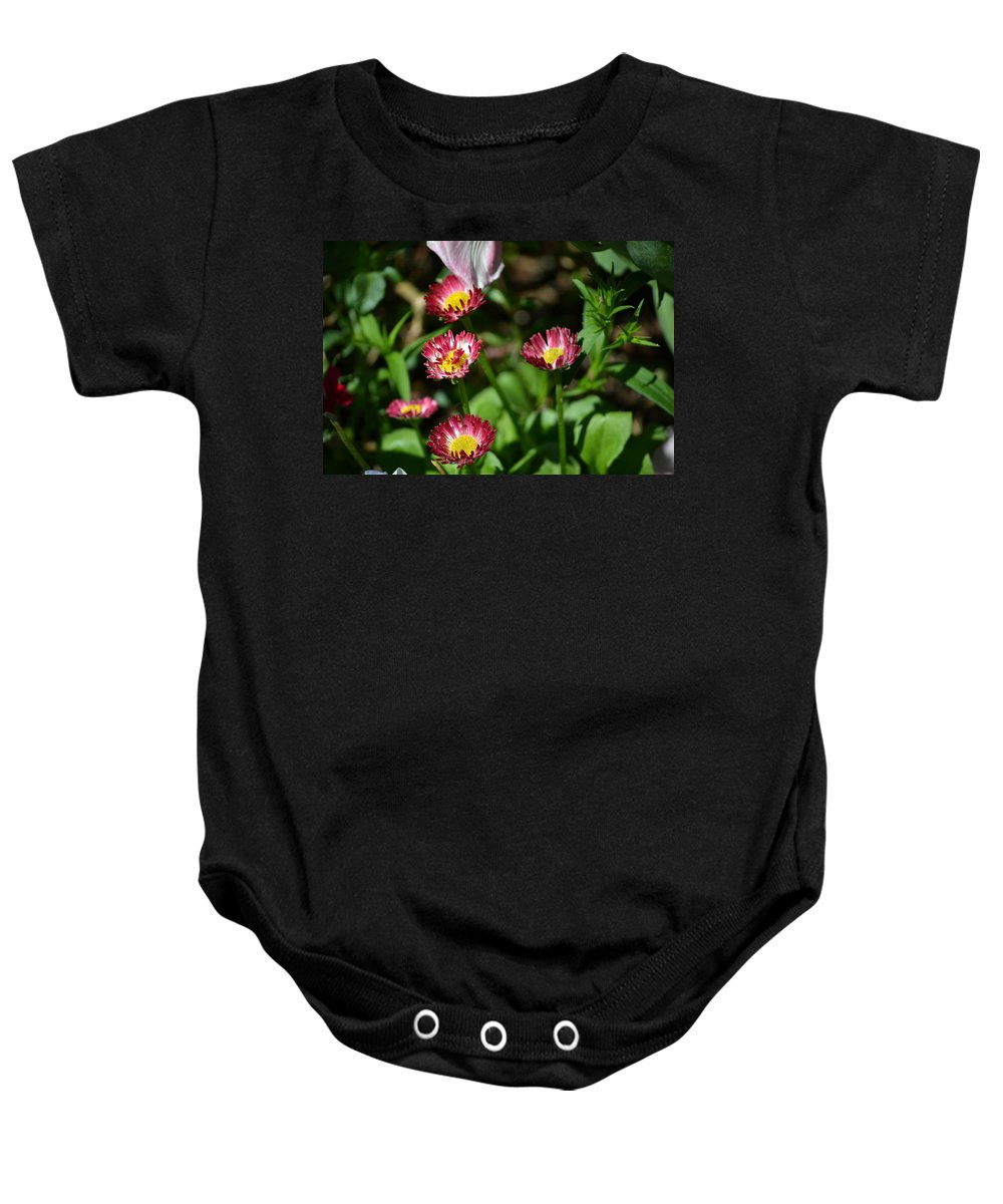 Spring Baby Onesie featuring the photograph Spring Blooms by Tara Potts