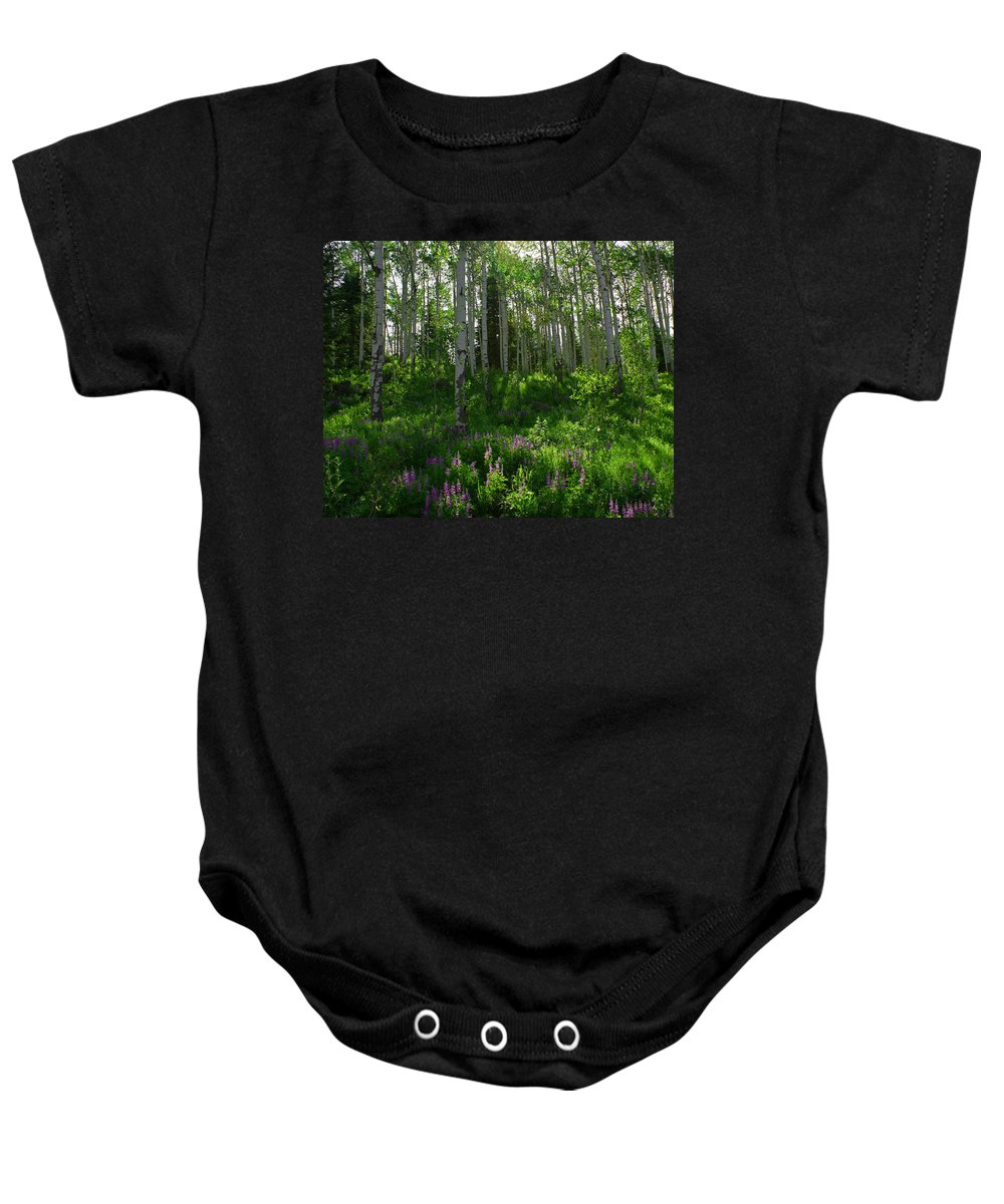 Aspens Baby Onesie featuring the photograph Springtime On The Grand Mesa by Ernie Echols