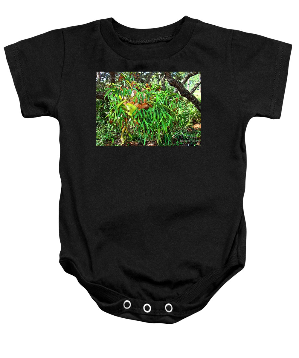 Staghorn Baby Onesie featuring the photograph Staghorn Fresco by Nancy L Marshall