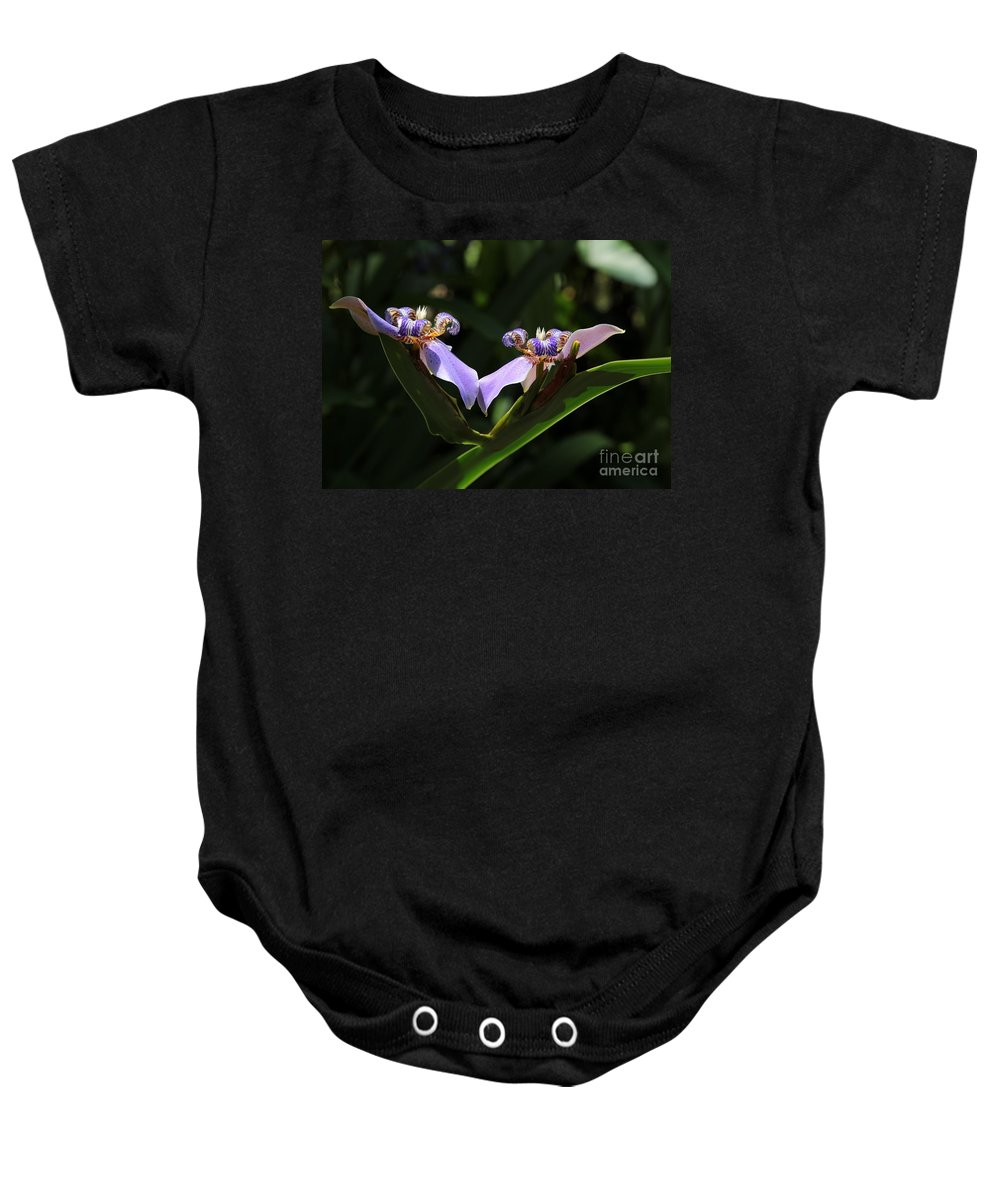 Iris Baby Onesie featuring the photograph Staying Connected by Carol Groenen