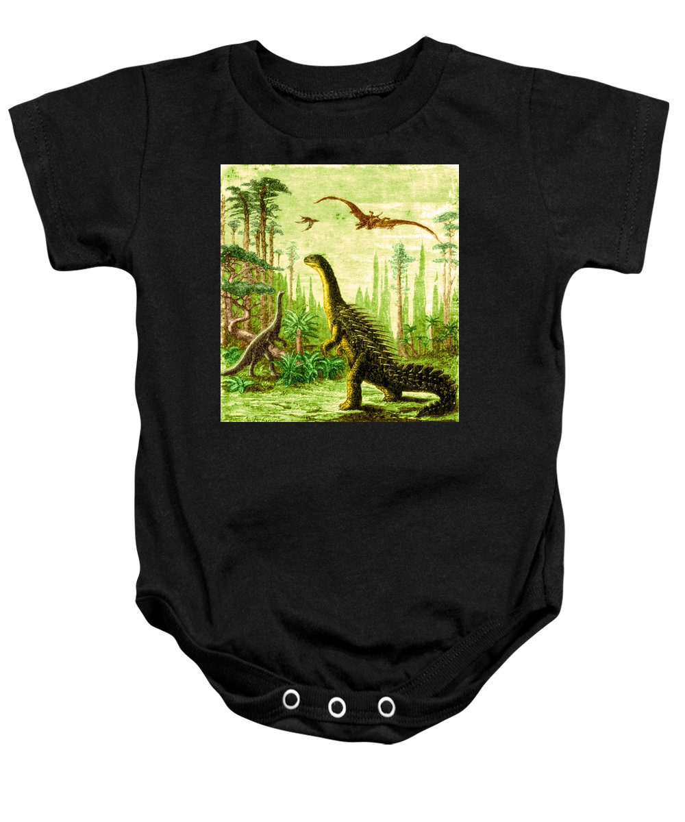Dinosaur Baby Onesie featuring the photograph Stegosaurus And Compsognathus Dinosaurs by Science Source