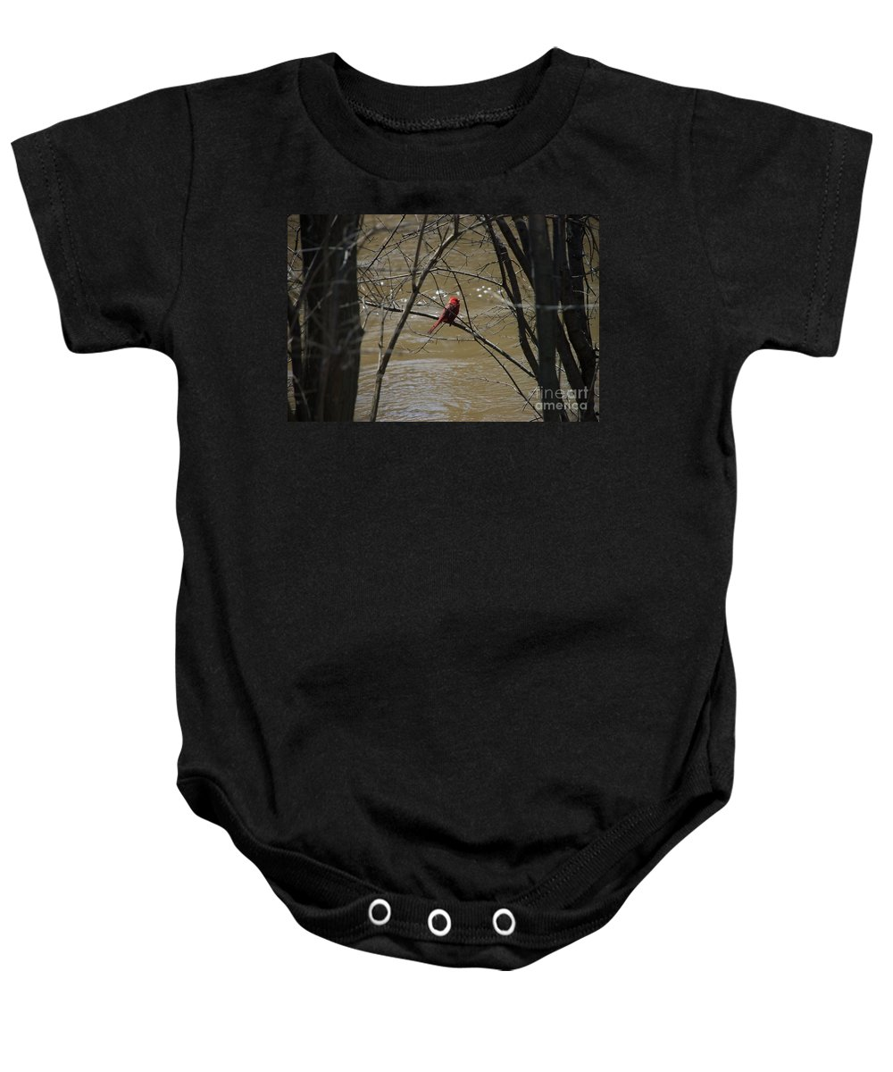 Bird Baby Onesie featuring the photograph Still Cold by Joseph Yarbrough