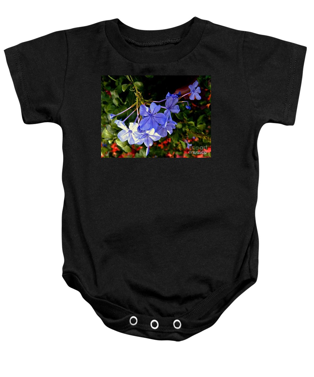 Garden Baby Onesie featuring the painting Sunlight On The Blues by RC DeWinter