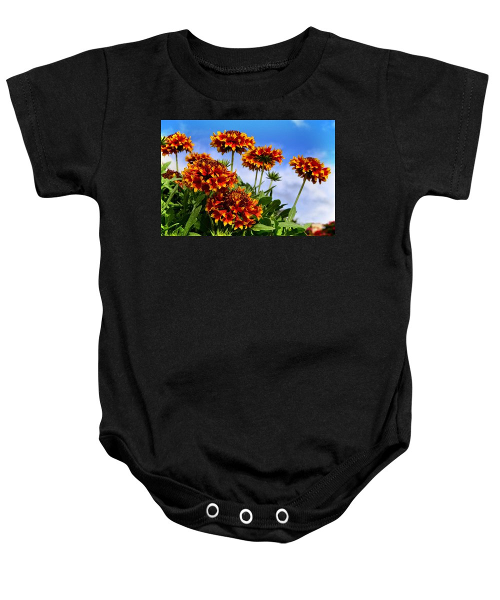 Wildflower Baby Onesie featuring the photograph Sunny Side Up by Lynn Bauer