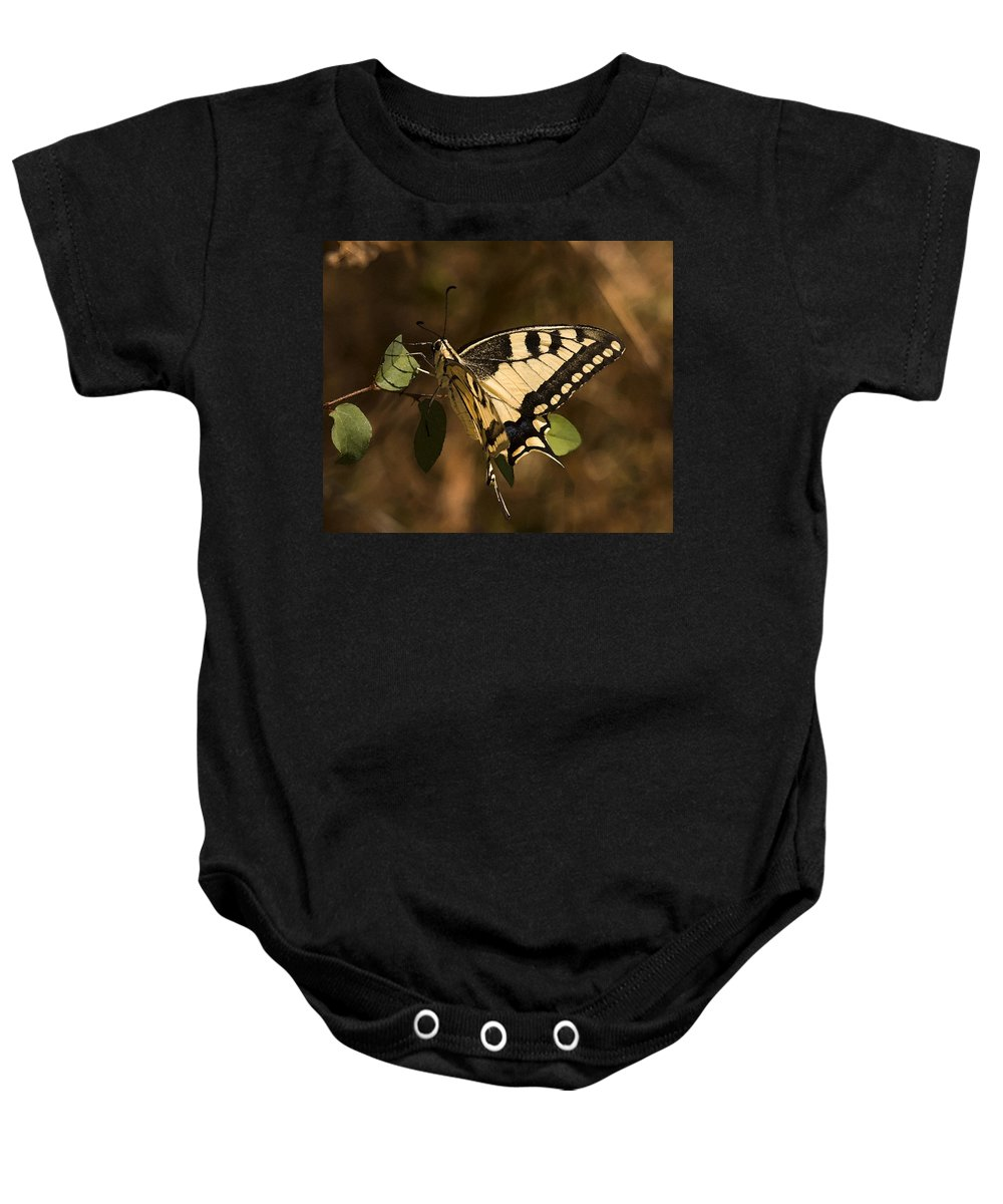 Swallowtail Butterfly Feeding On Nectar Baby Onesie featuring the photograph Swallowtail Butterfly by Cliff Norton