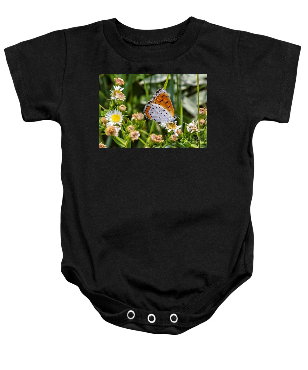 Swallowtail Baby Onesie featuring the photograph Swallowtail by Viktor Birkus