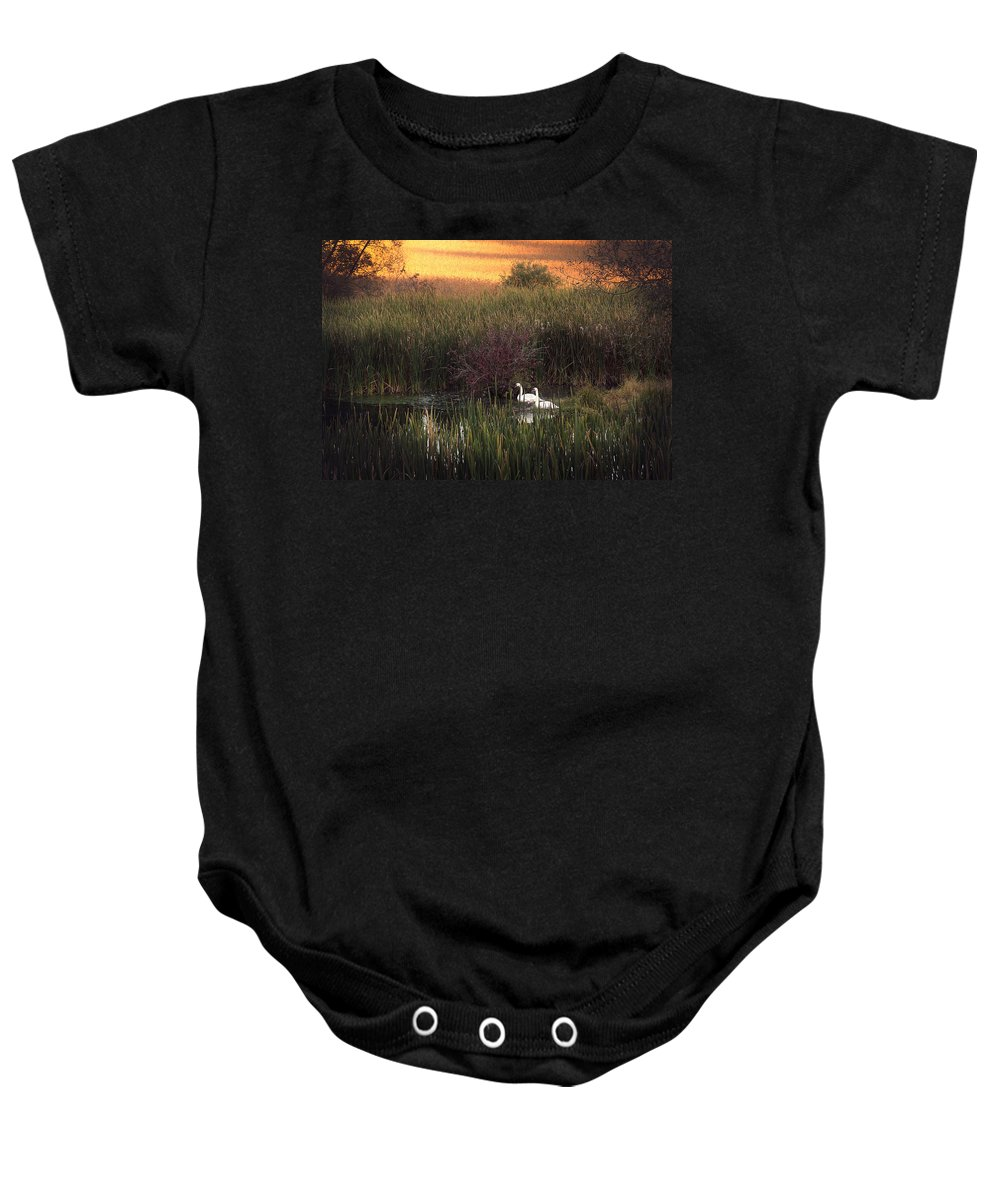 Swans Baby Onesie featuring the photograph Swan by Theresa Heald