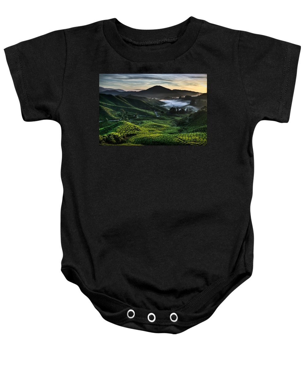 Tea Plantation Baby Onesie featuring the photograph Tea Plantation At Dawn by Dave Bowman
