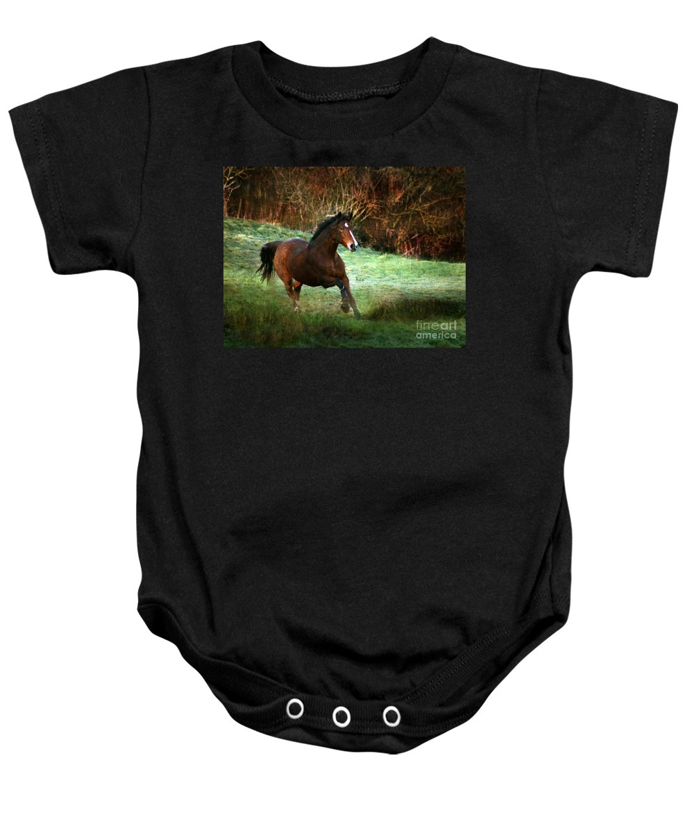 Autumn Baby Onesie featuring the photograph The Autumn by Angel Ciesniarska