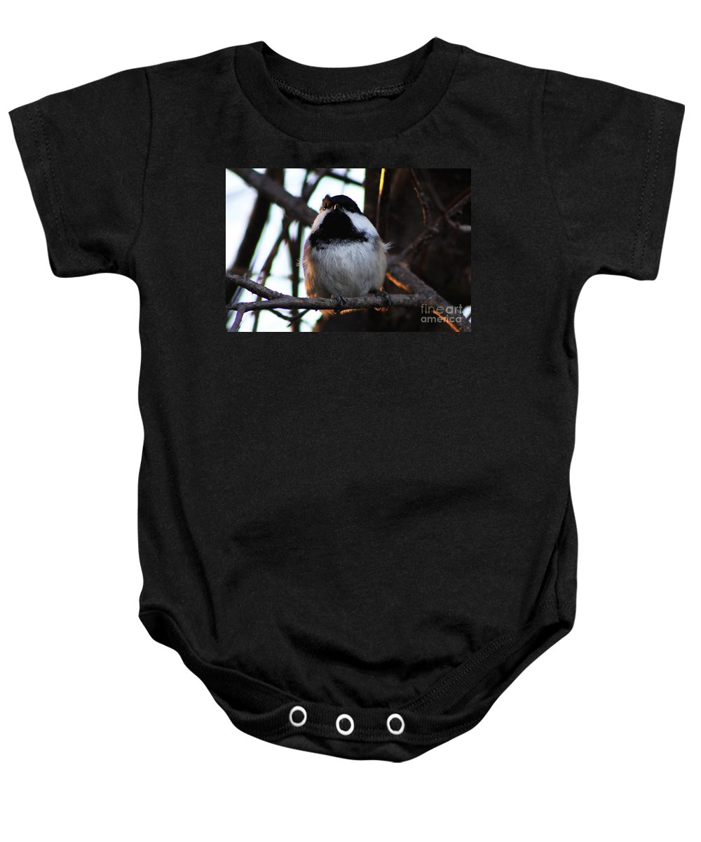 Bird Baby Onesie featuring the photograph The Raised Eyebrow by Alyce Taylor