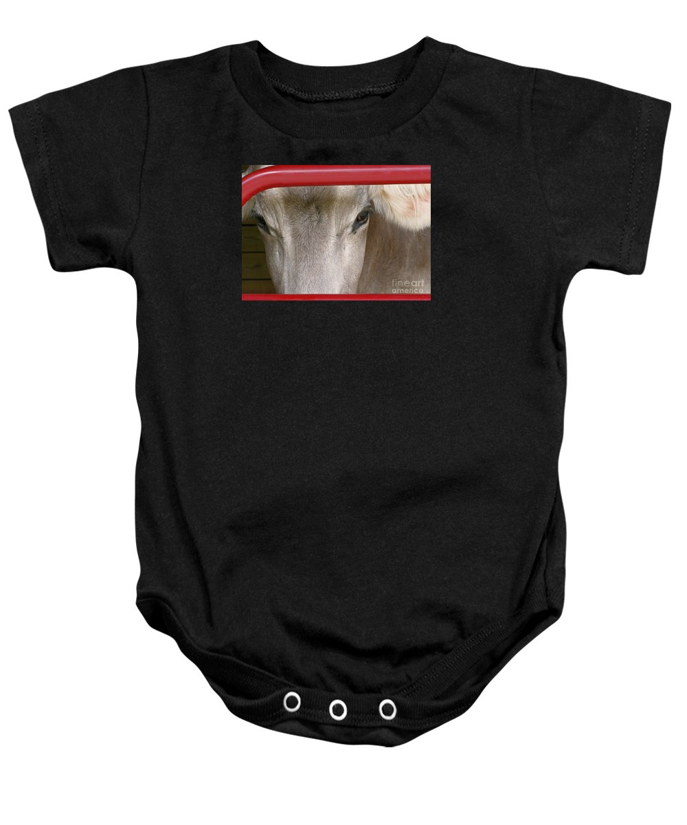 Cow Baby Onesie featuring the photograph Through The Gate by Ann Horn