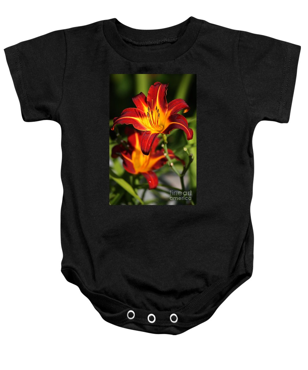 Tiger Lily Baby Onesie featuring the photograph Tiger Lily0243 by Gary Gingrich Galleries