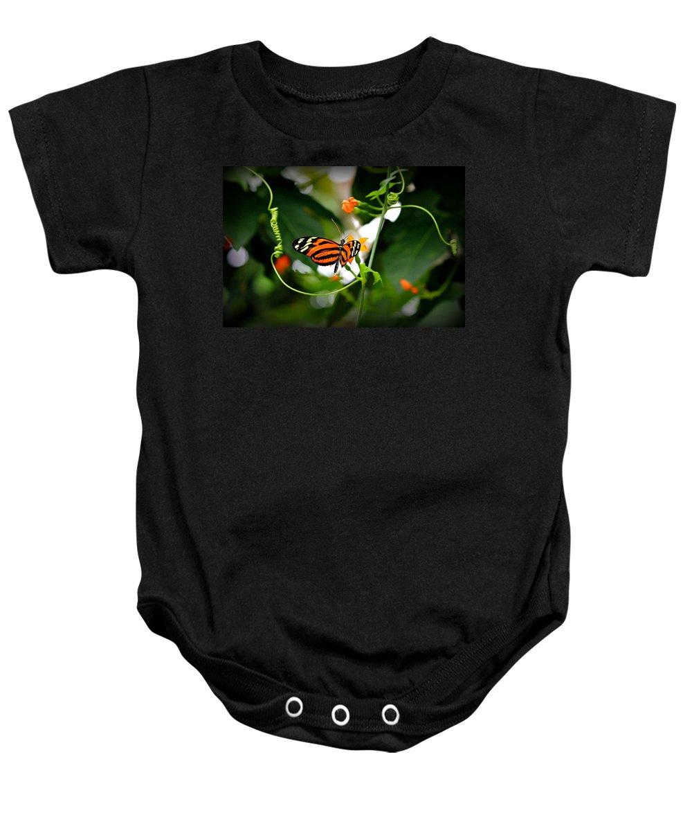 Butterflies Baby Onesie featuring the photograph Tiger by Reid Callaway