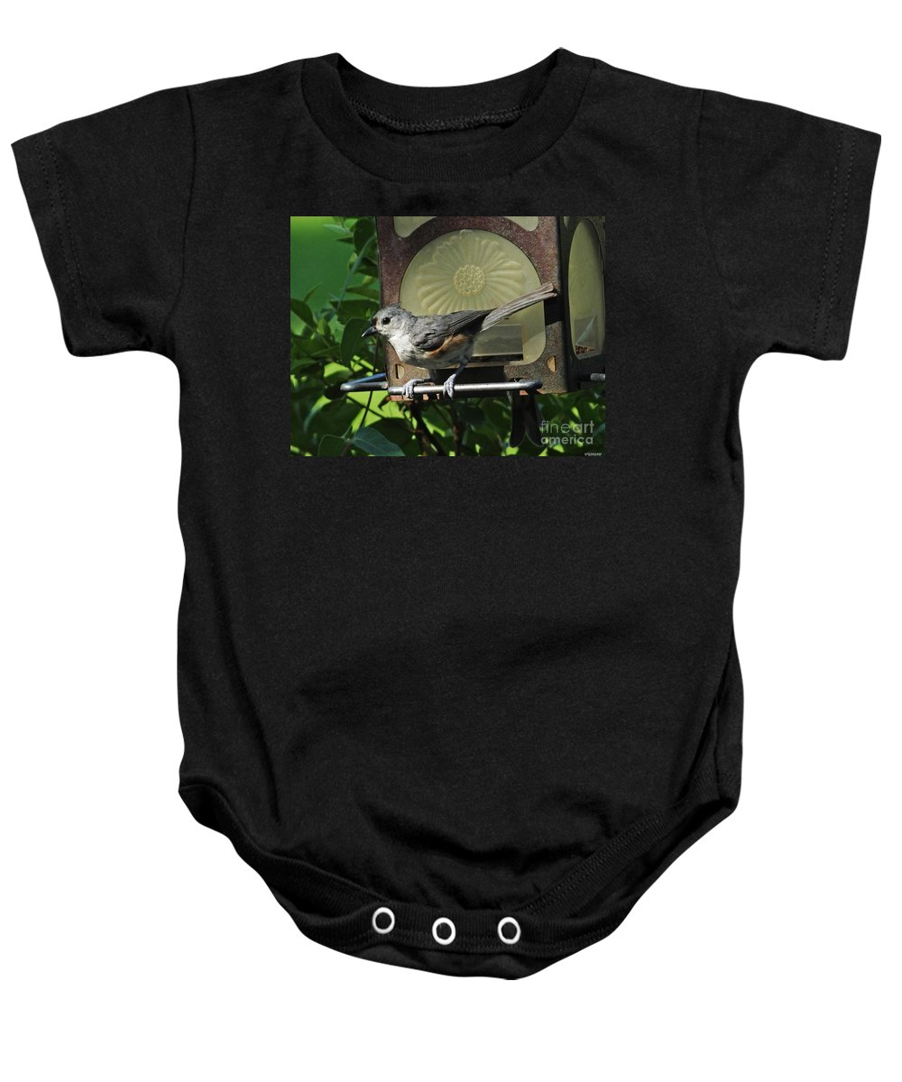 Titmouse Baby Onesie featuring the photograph Titmouse 2 by Lizi Beard-Ward