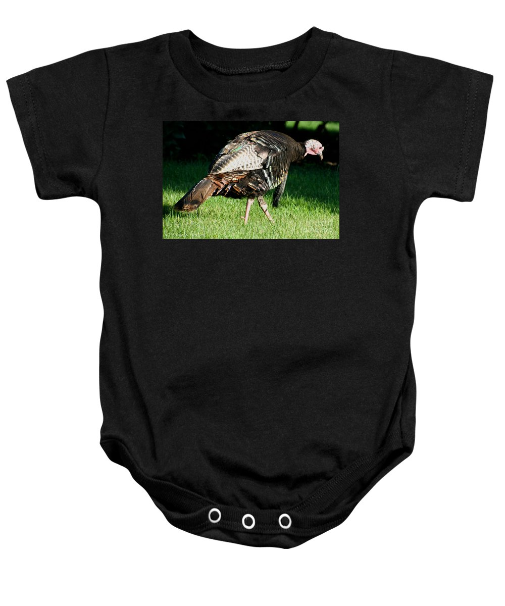Bird Baby Onesie featuring the photograph Tom by Susan Herber