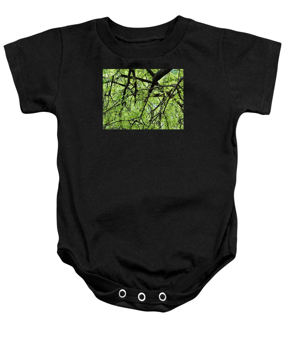 Tree Baby Onesie featuring the photograph Tree Branches by Cynthia Guinn